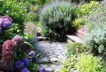 garden love/ outdoors / by Kelly Thompson