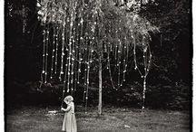 Midsummer Night's Dream / by Jessie Baloga