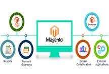 Gtb Nagar / website designing company in Gtb Nagar