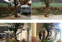 Do min joon / Do min joon's Tree
