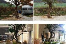 Do min joon / Do min joon's Tree