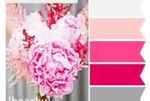 Colors for blog