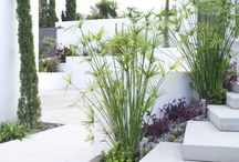 GARDENS / Landscape Gardener Adarve Jardines Marbella, Spain