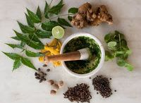 Herbs for Food and Medicine