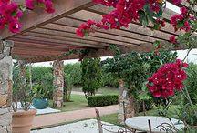 Arquitetura / Arquitetura, design de interior, de moveis, iluminação, paisagismo....