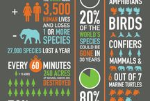 Biodiversity of earth