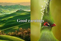 Good earnings