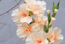 crep flower