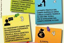 Corsi di Cinofilia / Perchè scegliere i corsi fatti o suggeriti da Dog Digital