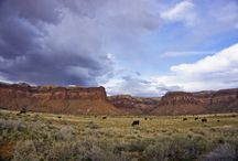Utah / Places to travel in Utah, United States.  www.adventuresofrayna.com