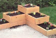 Garden Ideas / by Joyce Fiorilli