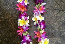 I Love Hawaii : Wedding Anniversary / Wedding anniversary and vow renewal