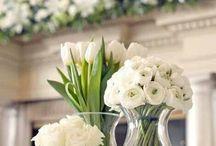 Lana & Grant / Wedding inspiration