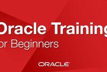 Oracle Training in Ludhiana