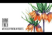 Diana Finch - Artist