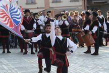 Manifestazioni ed Eventi / Alcuni ricordi di manifestazioni ed eventi a cui gli Sbandieratori di Quattro Castella hanno partecipato.