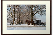 Horses & Buggies & Sleighs / This is one of the boards I have here that don't have anything to do with books or BVS. I've always loved images of horses and buggies...maybe because I have fond memories of hitching the pony to the sleigh and heading to my grandmother's house through the snow.