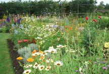 ogrody i łąki