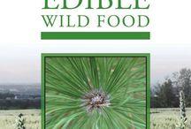 Wildcrafting & Survival Herbalism