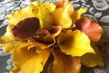 Fall Leaf Flowers