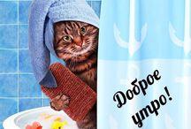 клёвые открытки)))
