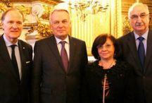 AFE : Assemblée des Français de l'étranger