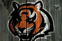 tigre eshg
