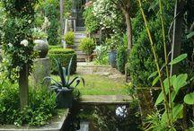Trädgårdsdamm