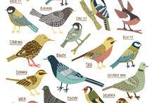 Linnut, eläimet
