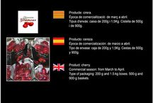 SAT Edoa 1446 CAT / Cooperativa de Fruita de Sucs