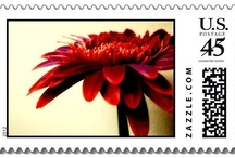 POSTAGE STAMPS {products} / Customizable USA Postage Stamps