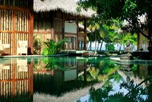 Pranamar Experience / by Pranamar Villas & Yoga Retreat