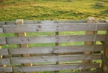 Doggy fence