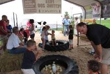 Petting Zoo Ideas