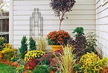 Garden Stuff / by Tiffanie Bonesteel