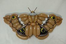 Бабочка и насекомые