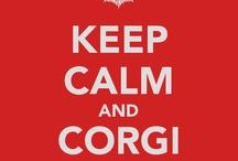 Keep Calm And Corgi On! / All you need is corgi! / by Malena H.