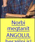 Nemet- Magyar szotar