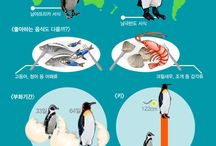 infographic / animal infographic 동물 인포그래픽 모음 http://www.aquaplanetstory.com/