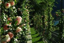 Romantic Villa in Como / Lake Como wedding planner  Email: info@italianweddingplanners.com