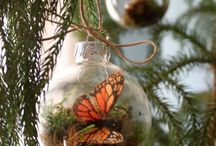 ornaments / by Amy Todahl