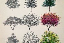 How to draw and paint trees