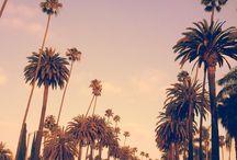 California ❤️❤️️