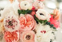 Fiori. / My obsession with peonies and other flowers