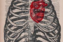 Anatomia y arte / Objetos y oras de arte inspirados en anatomía humana