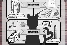 Owning a cat for the first time / Every accessory essential for your cat!