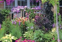 garden thoughts / by Cierra Neeley