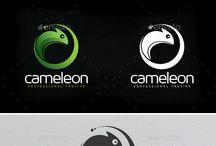 Cameleon Branding