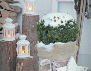 ogród zima