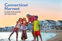 2014 Connecticut Visitor's Guide / So much to do in Connecticut this year! Sign up to receive a free 2014 Connecticut Visitor Guide: http://bit.ly/XkGuKF What are YOU looking forward to doing in Connecticut this year? / by Visit Connecticut